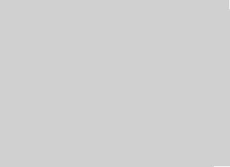 CEC 06