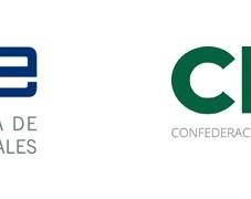 media-file-2529-logo-ceoe-cepyme